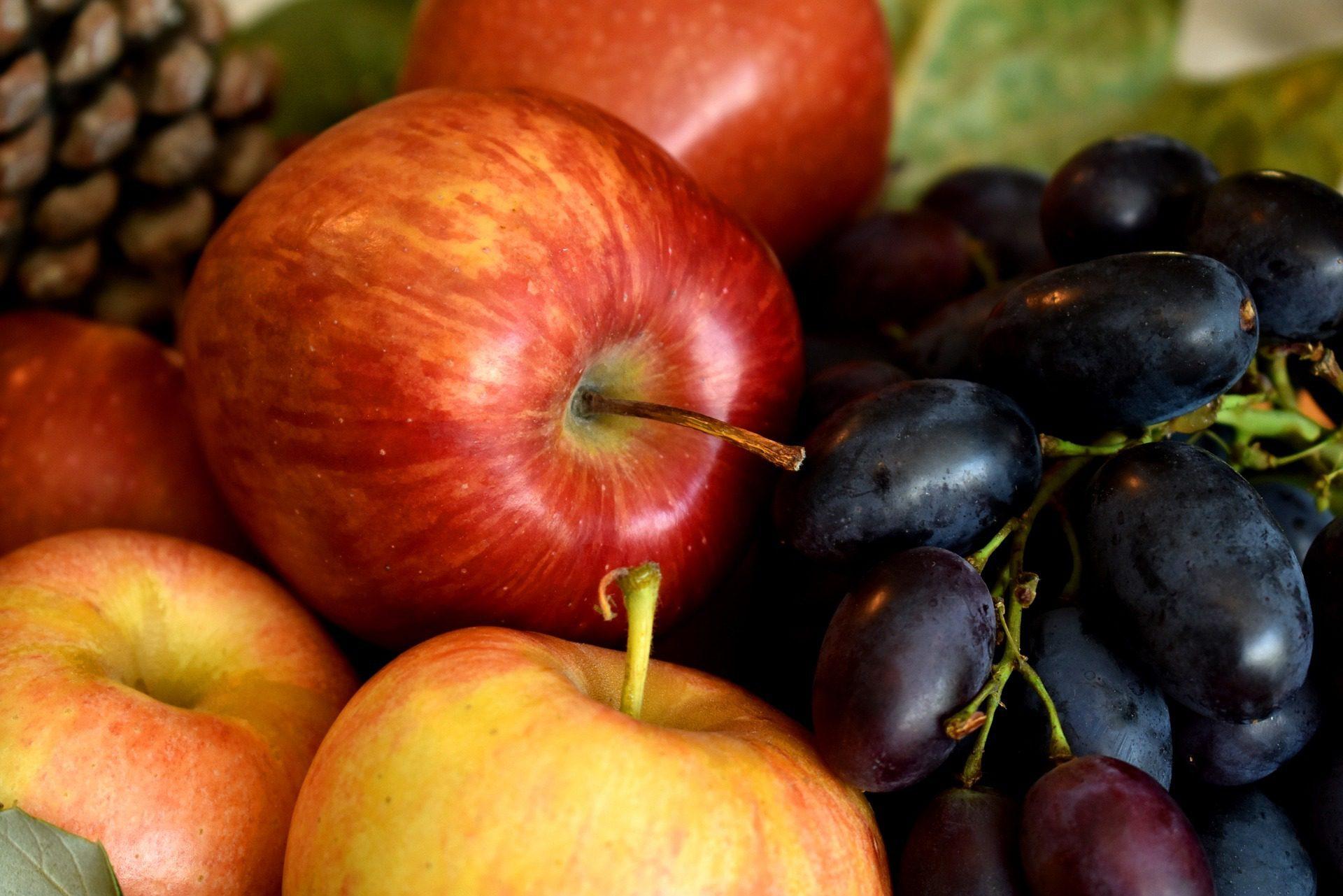 Ovoce a zelenina vprevenci civilizačních onemocnění