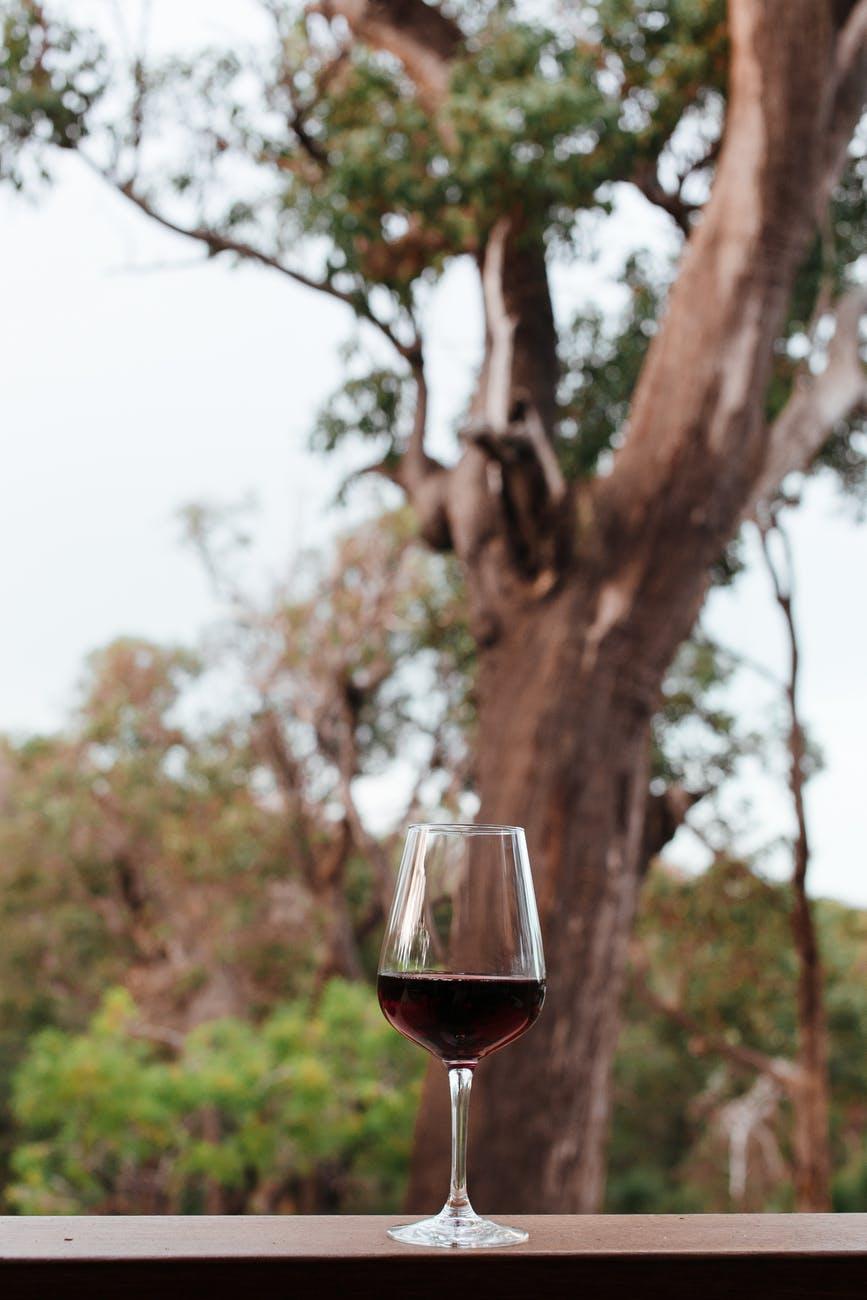 Tento lahodný mok milujeme, víno můžete občas, ale tvrdý alkohol k hubnutí nepatří.